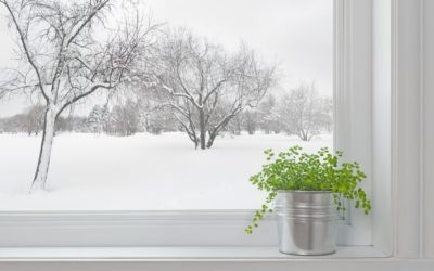 Top 8 Reasons to Install New Windows