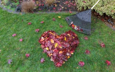 13 Tips for Preparing Your Yard for Winter